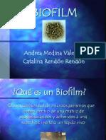 BIOFILm Actual