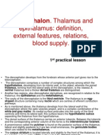 Diencephalon Thalamus and Epithalamus