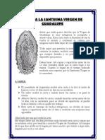 Carta a La Santisima Virgen de Guadalupe