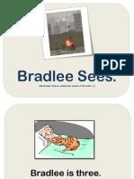 Bradlee Sees