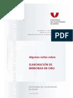 Algunas notas sobre ELABORACIÓN DE MEMORIAS EN ONG PLATAFORMA DEL VOLUNTARIADO DE ESPAÑA Junio de