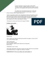 Filtrarea Pe Carbune Activ Permite In Depart Area Compusilor Organici Volatili