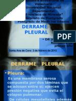 derramepleural-100430063425-phpapp01 ultin