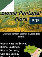 SEMINARIO PANTANAL