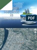 Diapositiva Seguridad Ciudadana de Tingo Maria