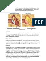 penyakit telinga