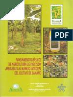 Fundamentos Basicos de Agricultura de Precision Banano