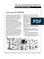 Openings for Wildlife