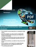 CFX Multi Phase 12.0 WS06 MUSIG&NonDragForces
