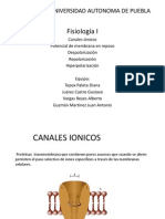 CANALES IONICOS.pptx