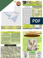"Boletín Semanal ""El Conquistador"" Diciembre 28, 2008"
