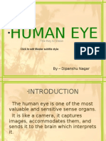 HUMAN EYE PRESENTATION