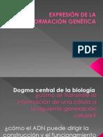 Dogma de La Biologia