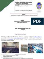 clase_5_depuracion_de_organismos_acuaticos(1)