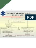 Algorit Bradicardia