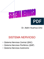 A-17 Sistema Nervioso