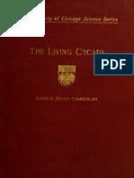 86884329 the Living Cycads Charles Joseph Chamberlain