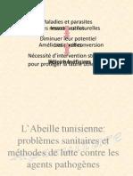 L'abeille Tunisie et problèmes sanitaires