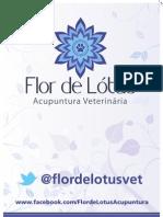 Banner Lona CURVAS
