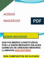 Acidos Nucleicos CEPREMEH
