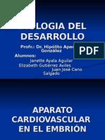 Aparato Cardiovascular 2 (2)