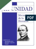 Unidad III - Mecanismos de La Herencia - 2009