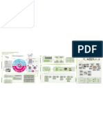 Infografia Estudio 4 Proyecto Final