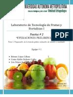Practica #2 Frutas