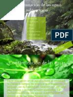 Contaminación de las aguas subterráneas