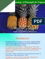 Pineapple Jai Prakash