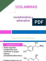 Catecolaminas[1]