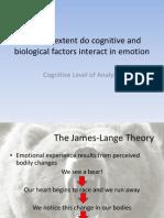 Cognition Bi Ole Motion