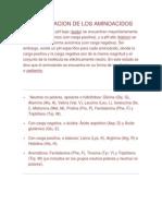 Clasificacion de Los Aminoacidos