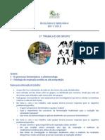 Instruções_Trabalhos_Grupo