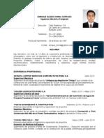 CV ENRIQUE HORNA