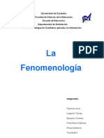 trabajo-de-fenomenologia