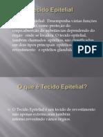 Tecido Epitelial (2)