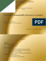 Asamblari+Demontabile+Prin+Pene+Si+Caneluri