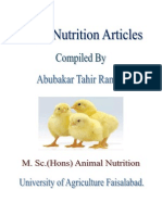 Layer Nutrition Articles