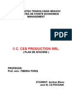 Plan de Afacere Sc. Ces Production Srl.