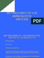 Metabolismo de Los Aminoacidos