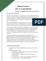 Ficha de lectura ¿QUE ES EL APRENDIZAJE'