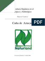 cana_de_azucar