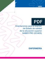Guia_enfermeria_2011