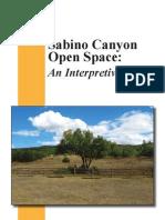 Sabino Canyon Open Space