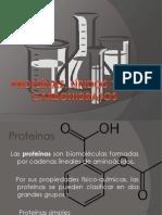 Proteínas, Lípidos y Carbohidratos