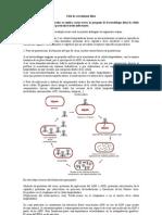 Ciclo Litico y Lisogenico Resumen