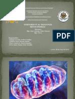 Seminario Nº6 Patología mitocondrial
