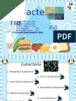 eubacteria56