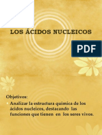 CLASE 03 BIOMOLÉCULAS ORGÁNICAS Acidos Nucleicos